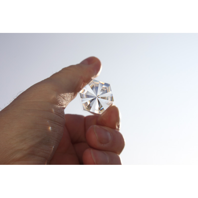 Sea horse 13 Facet Phi Crystal