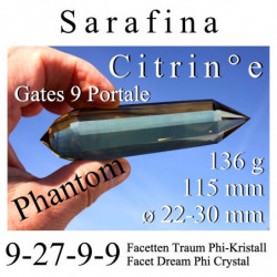 Zion 107 Facet Protection...